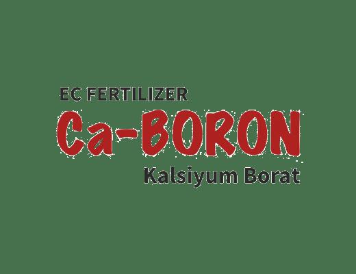 ca-boron