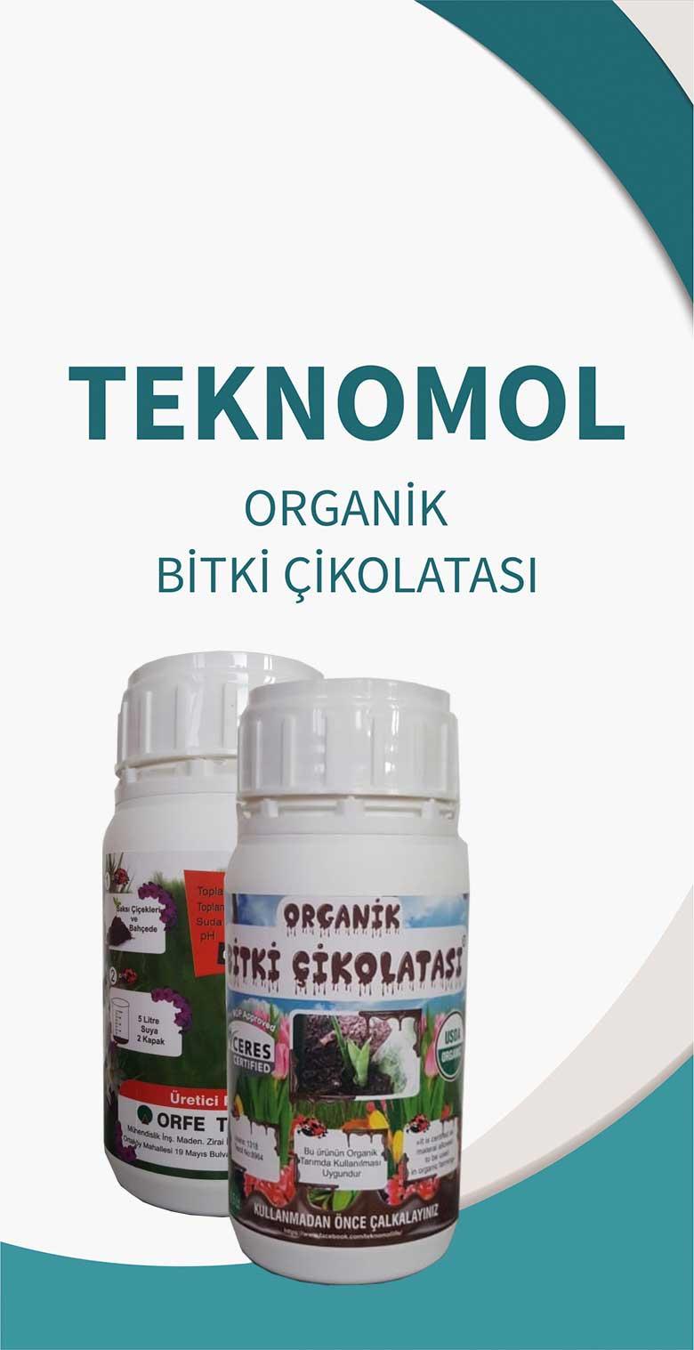 organik-cikolata